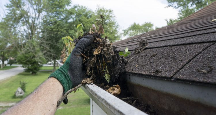 4 Tips For Safe Gutter Cleaning This Spring