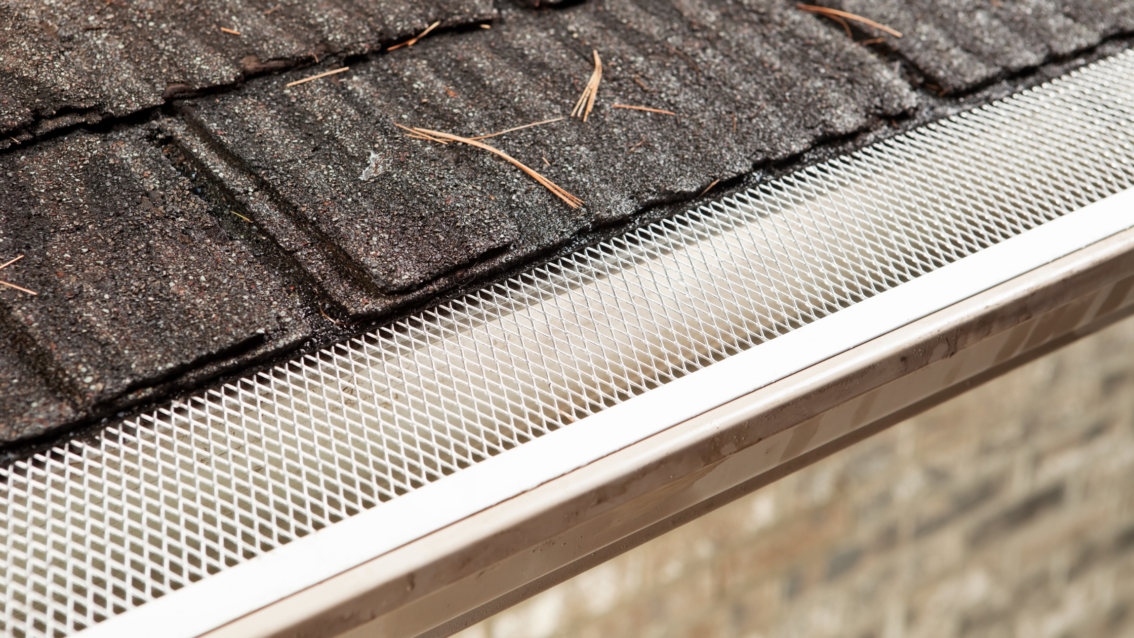 What Is The Best Type of Gutter Guard?